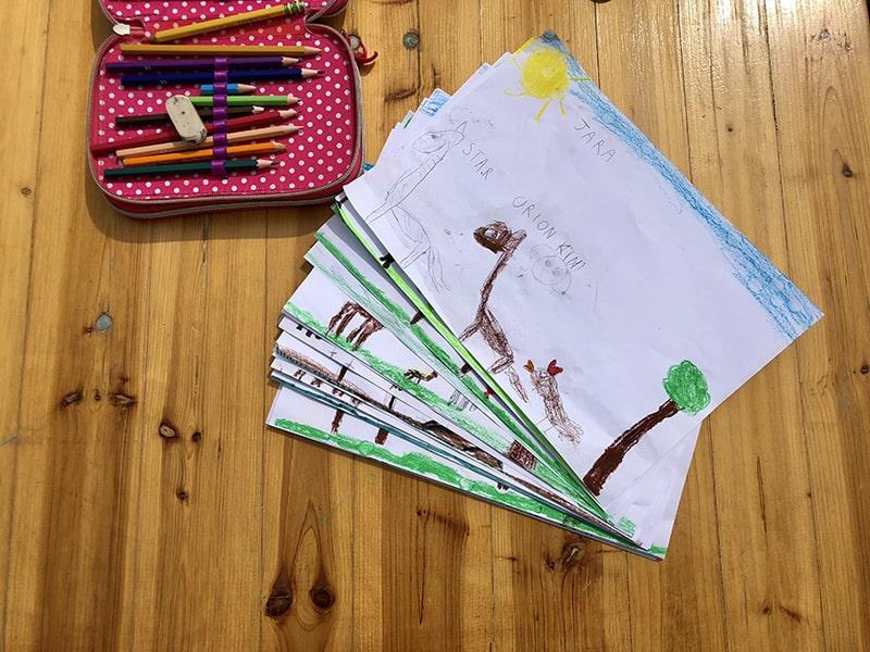Alpaca di Marano - Allevamento Alpaca - Corsi ed Eventi